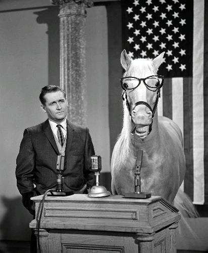 Alan Young and Mister Ed